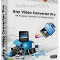 Any DVD Converter Professional 6.0.8 + Portable