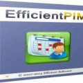 EfficientPIM Pro 5.50 Build 533