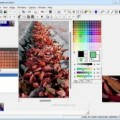 GraphicsGale 2.05.11