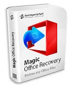 Magic Office Word Excel Recovery