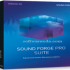 MAGIX Sound Forge Pro Suite 13.0.0.76 x86x64 [Latest]